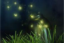 *˝¨*Fireflies*¨˝*