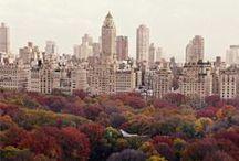 New York, New York / by Emily Schmidt