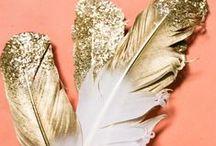 Feathers / Feathers, feathers and more feathers.