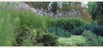 Die Blätter machen den Garten | collected by Klasse im Garten / leaves make the garden!