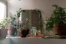 Home Decor / Ideas to make my house a home.