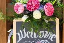 Welcome / by Chickie