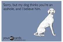 For dogs... / by Cheryl Croker