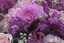 Artful Flowers / by Jenolyn