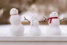 Holiday 2013 / by Tara Abhold