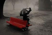 Umbrellas! / by CMD Websites