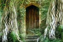 Doors and Windows / by CMD Websites