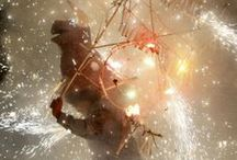 Celebrate! / by CMD Websites