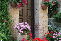 Lovely gardens and flowers / Flowers, gardens, landscaping, outdoors / by Veronica Nwosu