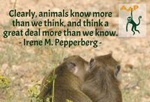Animal quotes and animals lovers' quotes / Quotes about animals and quotes by famous animal welfare defenders.