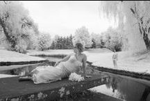 Wedding Photography / A collection of wedding investments