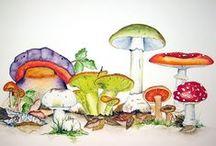 watercolor / by Tara Nix