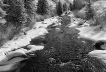 Infrared Landscapes / I began doing infrared landscapes after studying with Ansel Adams. A true gift.