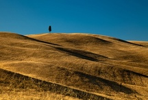 Hills of Tuscany / #Tuscany  / by Locanda San Francesco Tuscany