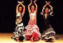 Flamenco / by Debra Blum