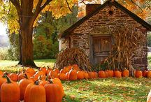 Fall~my favorite time of year :) / by Rita DePrince