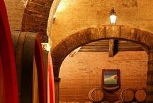 Our winery Tenuta Valdipiatta / Tenuta Valdipiatta, one of the most prestigious producers of Vino Nobile di Montepulciano.  / by Locanda San Francesco Tuscany