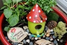 Faerie Garden Makings / by Sandra Dunnells