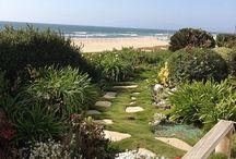 Beach house - outdoors