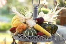 Fall decorating / by Kim Berndt