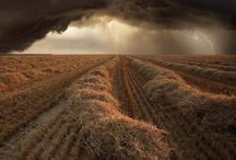 Farm Life / by Sandy Taylor