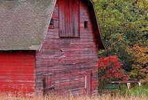 ~Barn Crazy, Take 2~ / by Christi Crook Benton