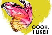 Oooh I Like