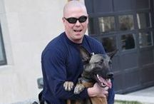 """KCPD Fuzzy Friends / The Kansas City Missouri Police Department uses dogs and horses to help perform their everyday tasks. The Mounted Patrol (horses) and the K9 Unit (dogs) to help with drug detection. Some divisions also just have """"pets"""" that stick around their station that they adopt in to the KCPD family."""