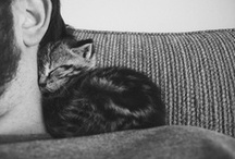 cuddlingly cute
