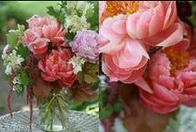 iLike | Flowers Beautiful Natura