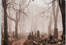 Cemetery Things / by Lindsey Botkin