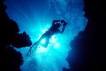 Under the sea / by Els van Hall