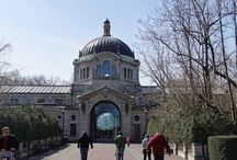 Zoo Entrances