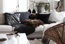 + cozy