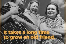 Friendship / It takes a long time to grow an old friend.