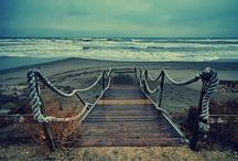 Beach Beach Beach / by Anne