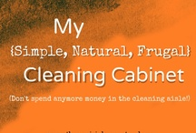 CLEANING TIPS : GENERAL / by Connie Huffman