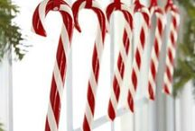 Candy Canes / by Liz Dyer