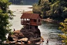 Cabin Fever / by Rosaura Ochoa