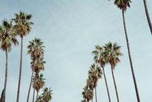 {S u m m e r ~ S u n} / The essence of summer.  / by Verity Megan