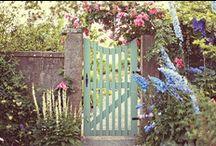 Gates of Interest / by Vicki Wronski