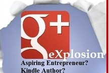 Promote Your Book / Practical advice on promoting you book - even before it's completed.