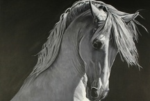 CHISHOLM GALLERY MASTER EQUINE PAINTINGS / Having developed a reputation as an international buyer and seller of fine and decorative arts, Jeanne works with private clients, decorators, architects, designers, publishers and museums. Gallery services include: building private and corporate art collections, brokering of art, purchase, sales and appraisals of individual works, collections and libraries.