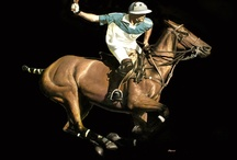 Polo Paintings, Watercolours + Prints