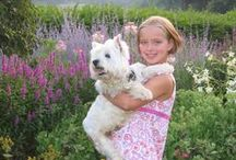 Wonderful Westies / Westies: The best big dogs in li'l dog bodies...and some other cuties
