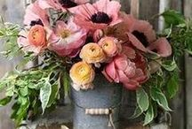 Everyday Flower Arrangements / Beautifully arranged flowers for all occasions.