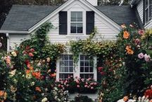 My Dream House / Lovely houses that I love and dream about!