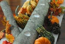 Autumn / by Jessica Vasil