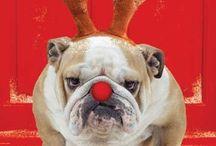 Holiday fun! / by Amanda Melissa