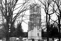 MSU Campus Landmarks / Michigan State University Landmarks / by Michigan State Spartans
